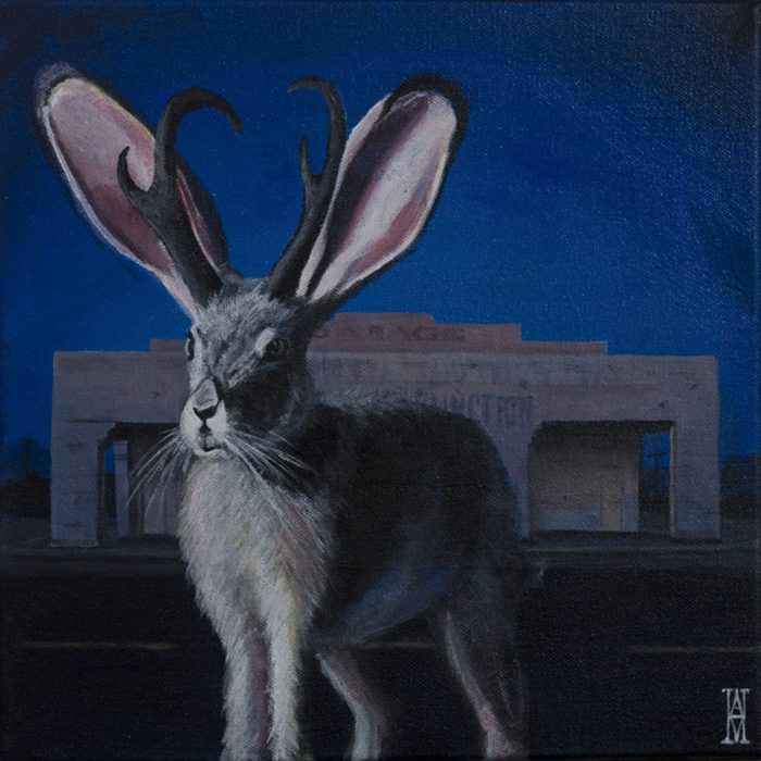 Night Of The Jackalope