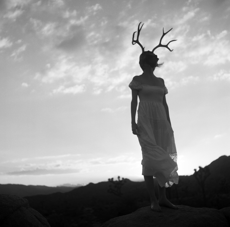 Joshua Tree Mask Sunset