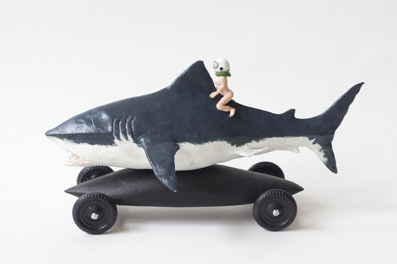 shark_side_img_0981